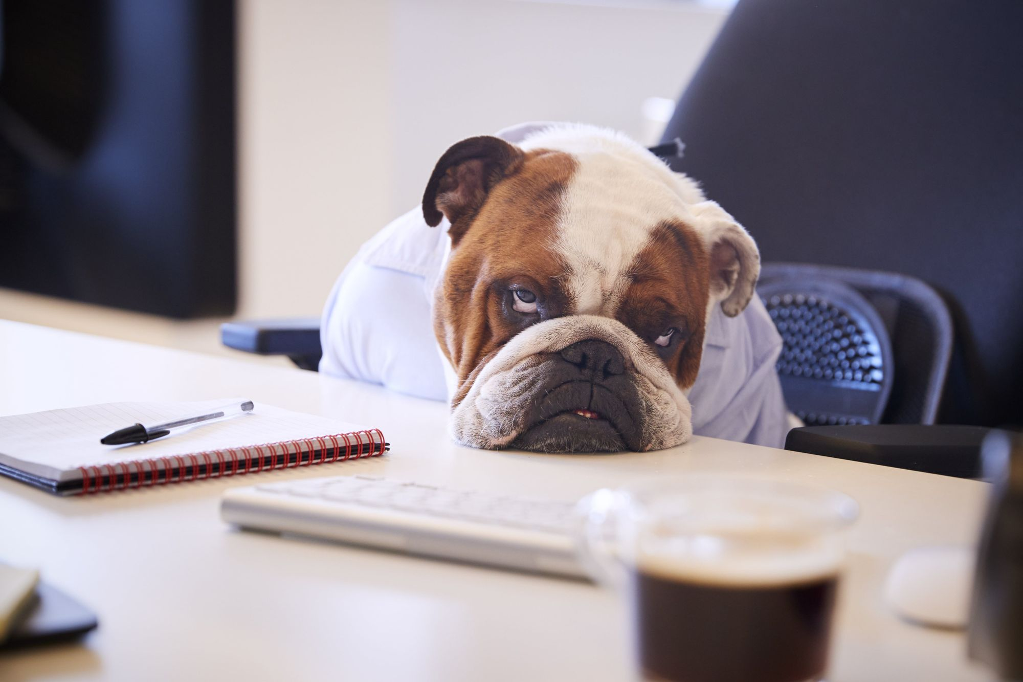 The Science Behind Monday Blues & 10 Tips to Avoid them