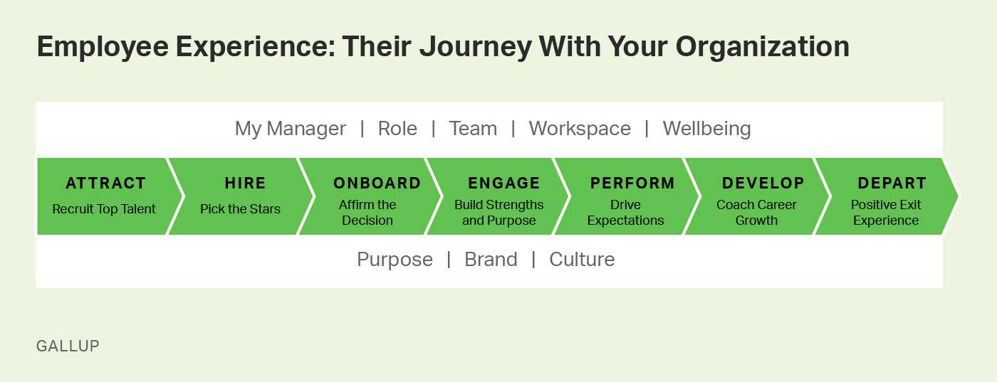 Employee Experience: Their Journey with your Organization