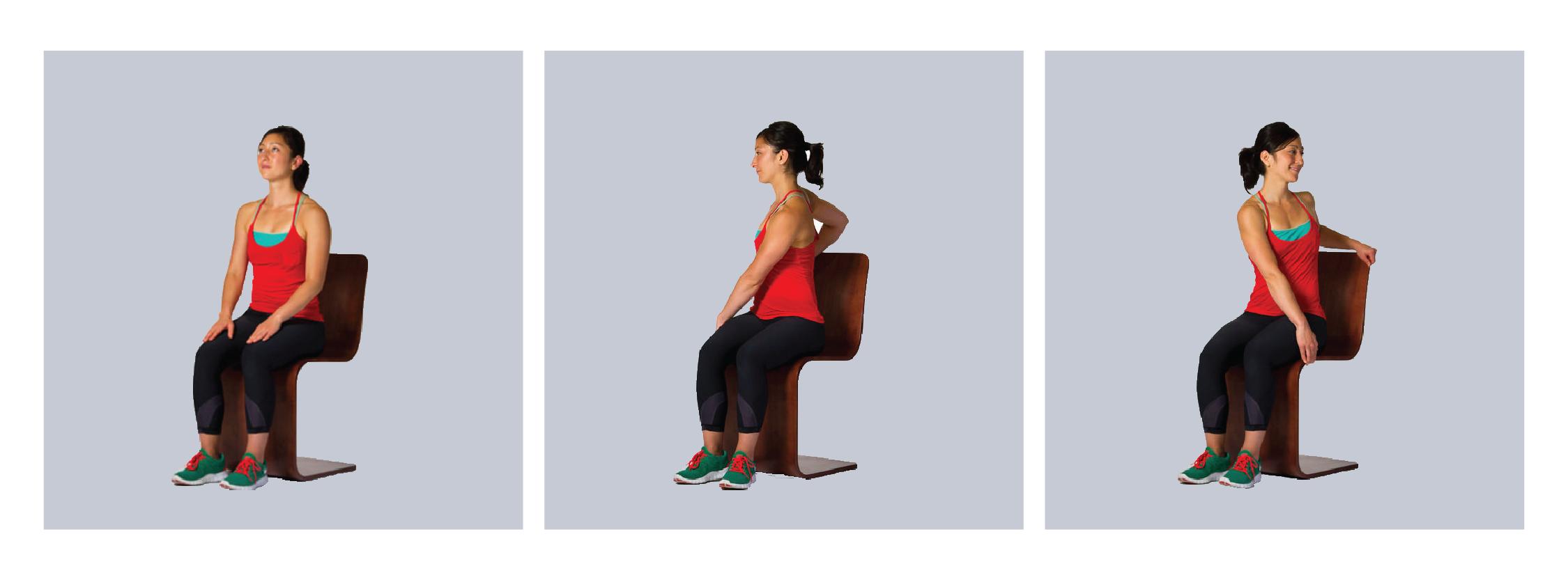 Seated torso twist